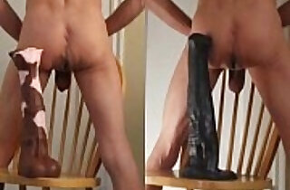 Stallion Cock and Horse Penis Ass Fuck... the Bigger the Better.  xxx porn